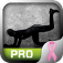 Butts Trainer Pro - Exercise for PINK
